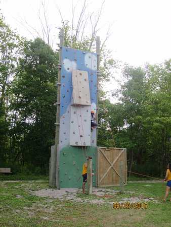 Fern Resort: Climbing wall