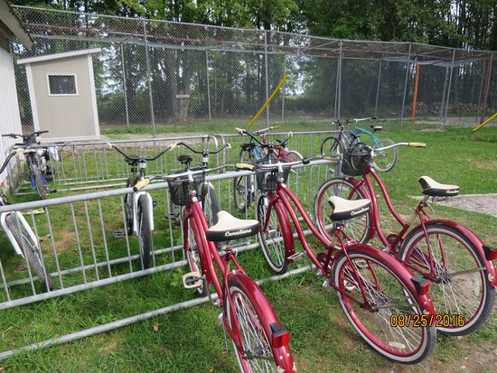 Fern Resort: Bikes you can borrow for free (adults & kids)