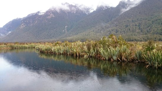 Te Anau, Νέα Ζηλανδία: DSC_0040_large.jpg