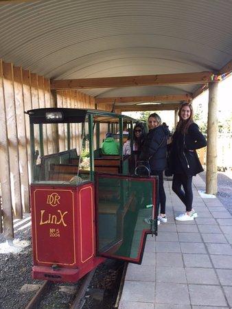 Coromandel, New Zealand: All aboard