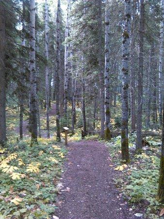 Waskesiu, Kanada: IMG_20160828_110203_large.jpg