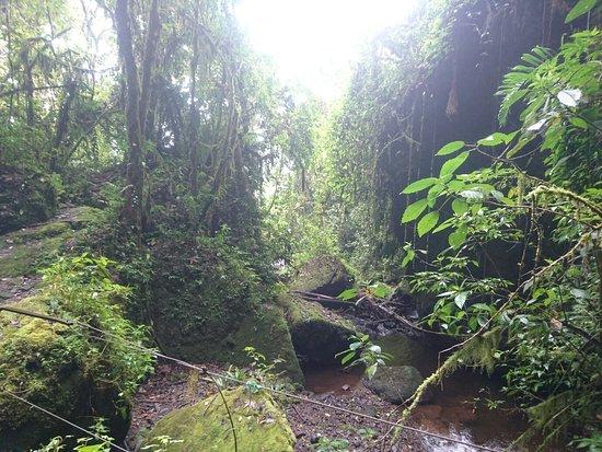 Департамент Антиокия, Колумбия: DSC_0008_large.jpg
