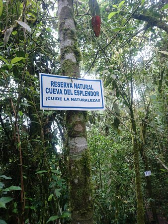 Департамент Антиокия, Колумбия: DSC_1134_large.jpg