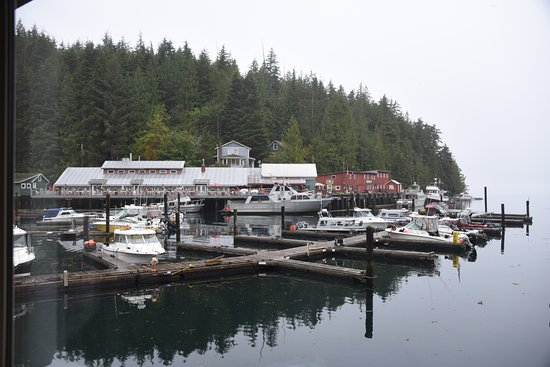 Telegraph Cove Marina & RV Park: View from #14