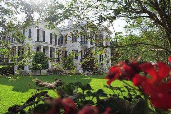 Nottoway Plantation Resort: La maison