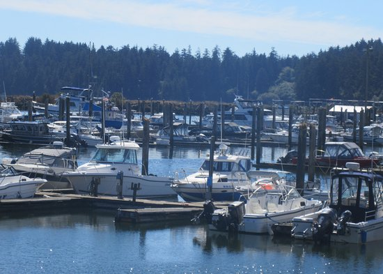 Fishing charter fotograf a de port of ilwaco boardwalk for Ilwaco wa fishing charters