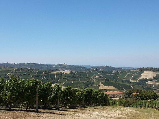 Bossolasco, Italia: Paesaggi delle Langhe