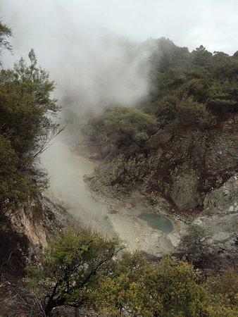 Wai-O-Tapu Thermal Wonderland: photo8.jpg