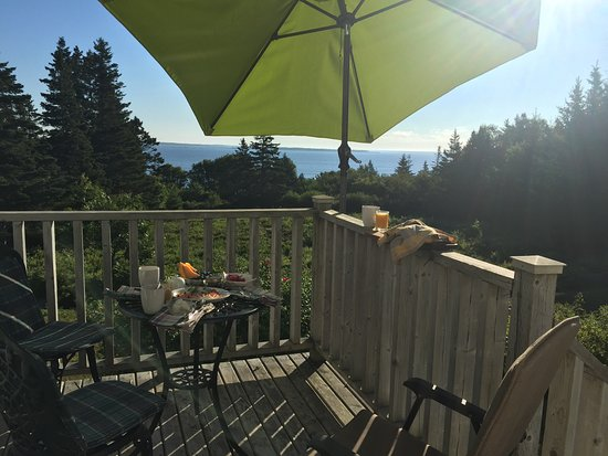 Liverpool, Canada : view from the room / private patio