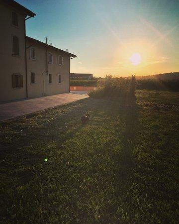 Сан-Пьетро-ин-Кариано, Италия: photo0.jpg