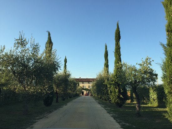 Сан-Пьетро-ин-Кариано, Италия: photo1.jpg