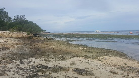 Bluewater Panglao Beach Resort: 20160828_161744_large.jpg