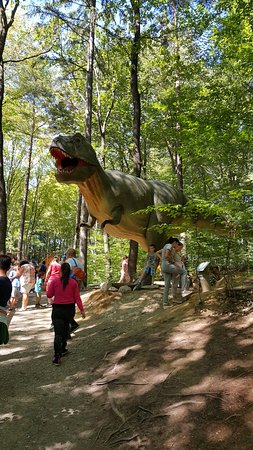 Rasnov, Roemenië: T-Rex - the dinosaurus that everyone was looking for