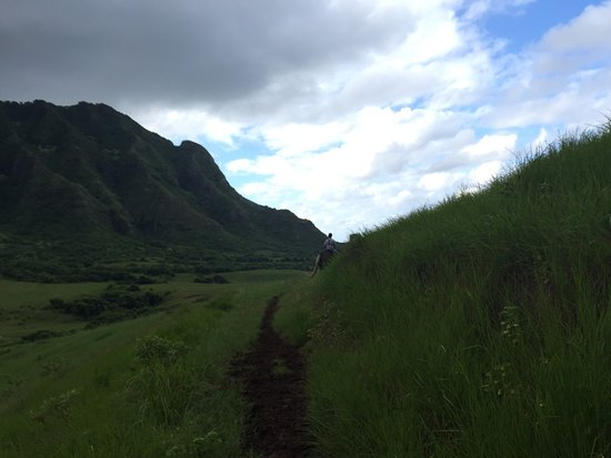 Kaneohe, HI: photo8.jpg