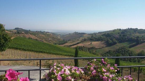 Marano sul Panaro, Ιταλία: 20160827_093601_large.jpg