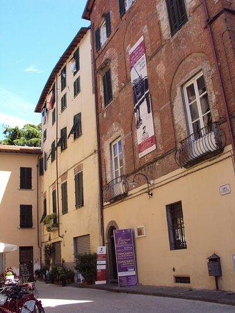 Puccini Museum - Casa natale : Puccini museum
