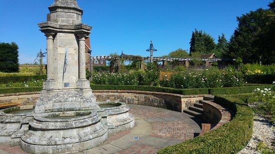 Bushey Rose Garden