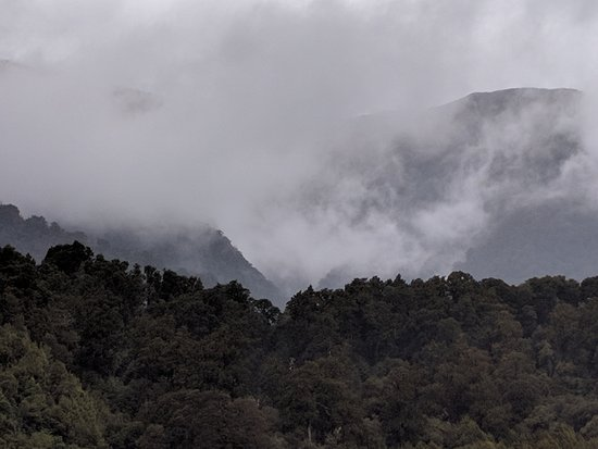 Westland National Park (Te Wahipounamu), Nueva Zelanda: View from the balcony