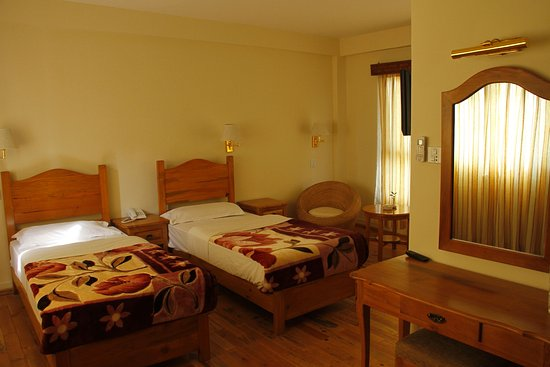 Hotel Holy Himalaya: Deluxe twin room