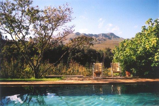 Elgin, Sydafrika: Wildekrans Country House pool