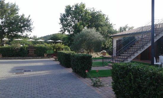 Villaggio Le Querce: In fondo si intravedono gli ombrelloni della piscina (riscaldata!)
