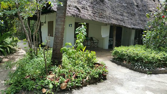 Ndame Beach Lodge Zanzibar: 20160829_124836_large.jpg