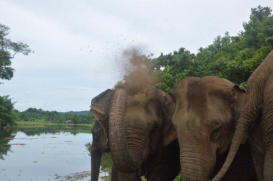 Sayaboury, Laos: Después de tomar el baño