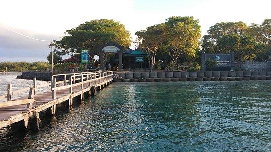Pemuteran, Indonésia: Dermaga resort TN Bali Barat di Pulau Menjangan