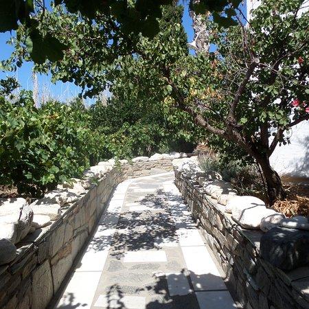 Paros Apartments : Le chemin mene a l'arriere des appartements