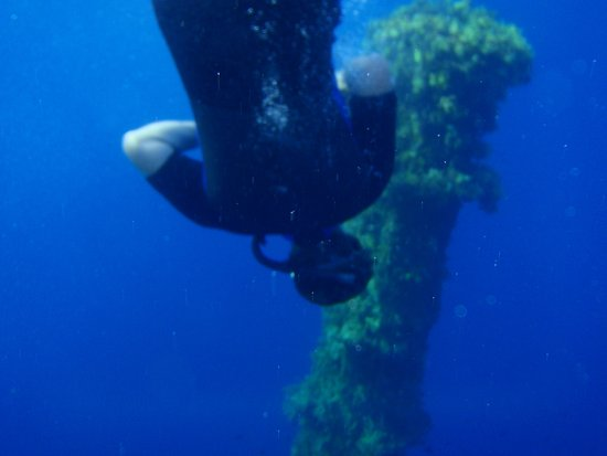Blue Fin Divers Naxos Greece: snorkeling
