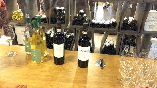 San Casciano in Val di Pesa, Italia: Los Vinos de la cata