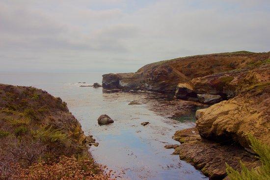Point Lobos State Reserve: Beautiful Coastal Views Abound