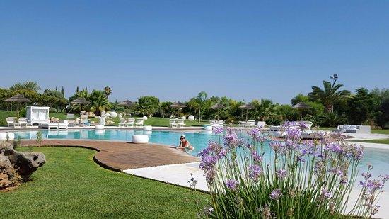 Hotel Borgo Pantano: La bellissima piscina
