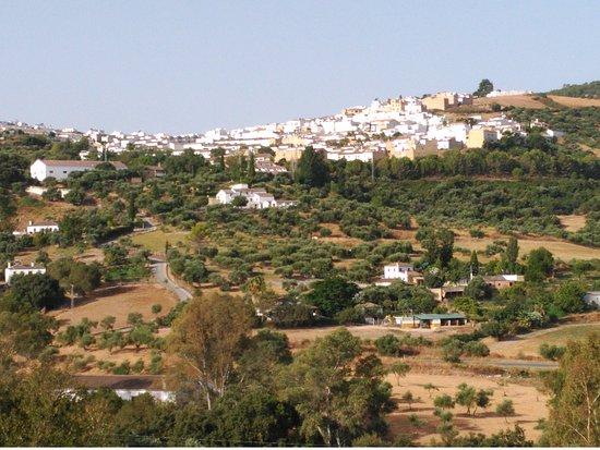 Prado del Rey, Hiszpania: Esta foto está tomada desde la terraza exterior.