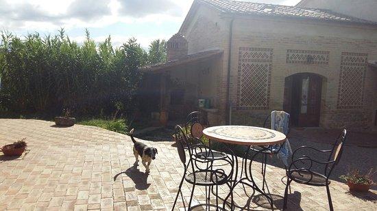 Umbertide, Italy: 20160822_093719_large.jpg