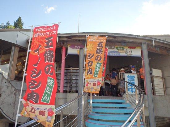 Gojo, Japón: 2階にお店があるが超狭いために玄関付近はこの通り混雑