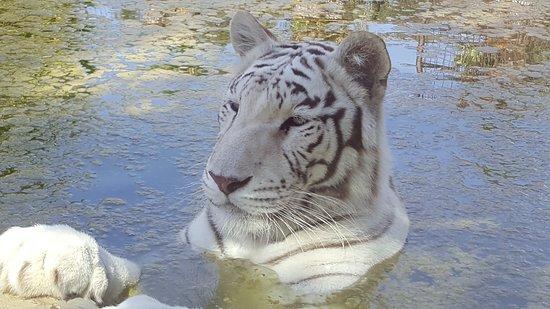 Mundo Park Zoo de Sevilla