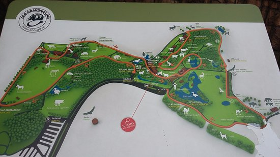 zoo map Picture of Oliwa Zoo Gdansk TripAdvisor