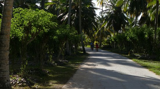 Praslin Island Photo