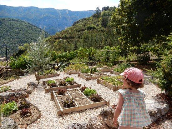 Brantes, Frankrike: jardin