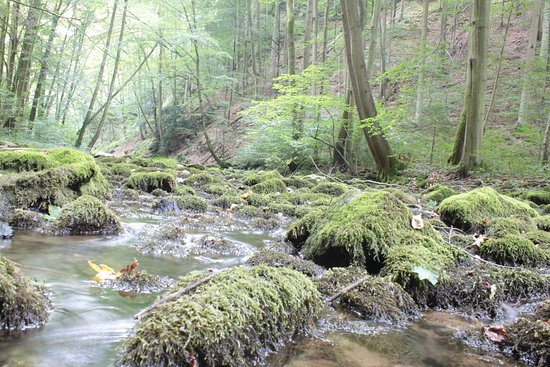 Blansko, República Checa: grotte