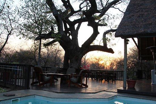 couché de soleil sur la piscine de Needles Lodge