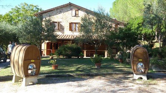 Piccione, Italia: 20160825_165606_large.jpg