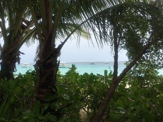 Фотография Остров Курамати