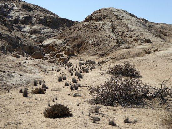 Σβακοπμούντ, Ναμίμπια: Desert gully