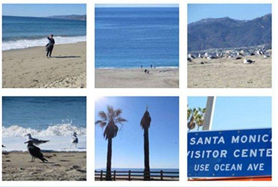 Manhattan Beach: NICE BEACH