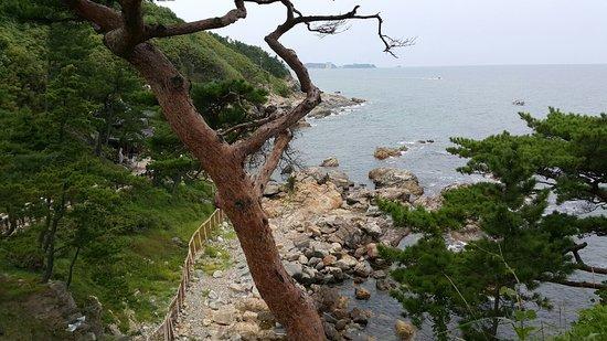 Yangyang-gun