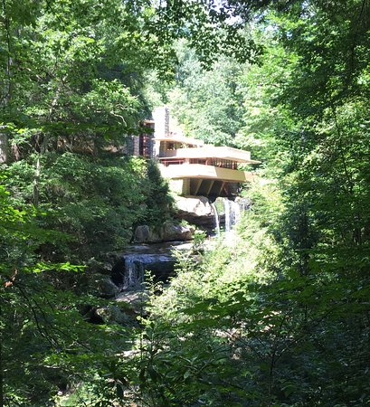 View of Fallingwater