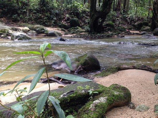 Selangor, Malaysia: Sungai Tua Recreational Forest