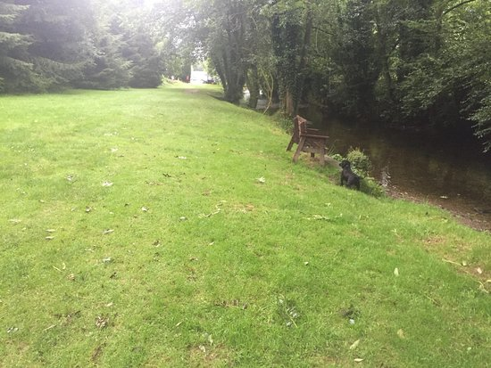 Dulverton, UK: The river in the dog walk area
